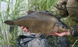 homeclose fishery fishing in rutland